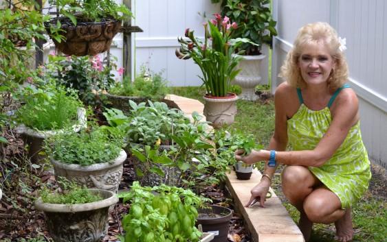 Julie's Herb Garden