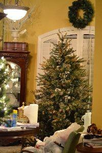 yep another tree_small