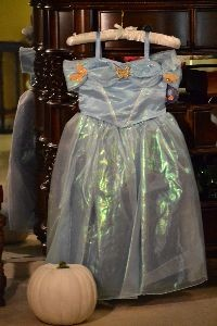 Cinderellas dress for the ball_small