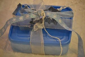 gift of Cinderella cookies_small