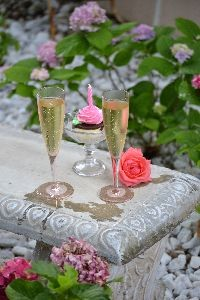 cheers anniversary wedsite_small