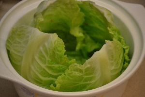 you want to overlap each cabbage leaf_small