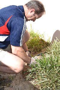 Gordon building the wall_small