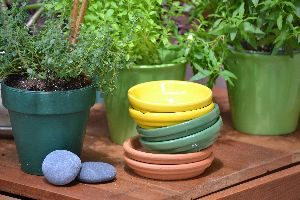 colorful saucers_small