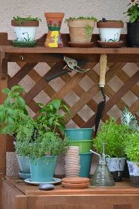 herbs with pots_small