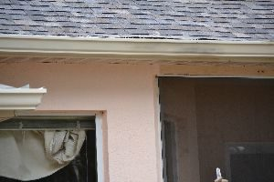 paint the trim and spray the gutters_small