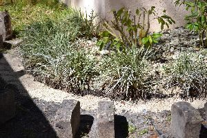 when the little path is filled with sand and paver sand and patted down by Gordon_small