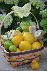 basket of lemons and limes_small