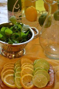 lemon balm with limes and lemons_small