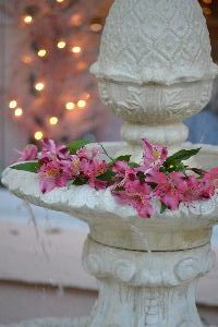 fountain flowers 3_small
