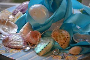 seashells underneath the tree_small