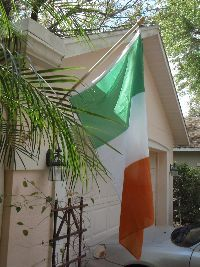 Flag of Ireland_small