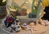 Jose Gaspar, Pirate Fish