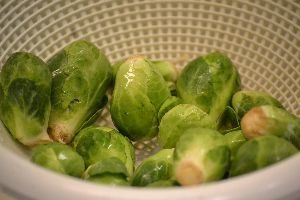 b sprouts 1_small