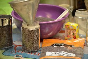 mustard seeds and funnel_small